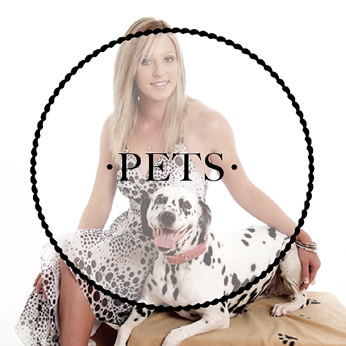 Find out more about our pet sessions